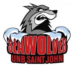 UNB Saint John Volleyball 1 Camp