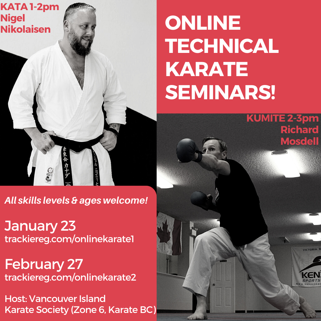 Online Technical Karate Seminars, Kata & Kumite!