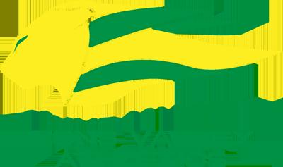 Lions Valley Athletics 2017 Membership