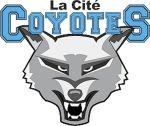 2018-2019 La Cite Varsity Program